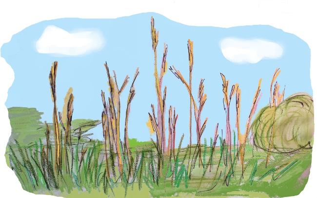 Ein afrikanisches Sprichwort besagt: Das Gras wächst nicht schneller, wenn man daran zieht. Das Konzept des Kinderladens Garuda e.V. in Berlin-Pankow lässt Kindern ausreichend Platz und Raum zum Wachsen.